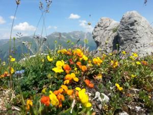 Freizeit geniessen mit Bergblick auf das Tegernseer Tal
