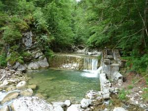 Wasserfall Tatzlwurm